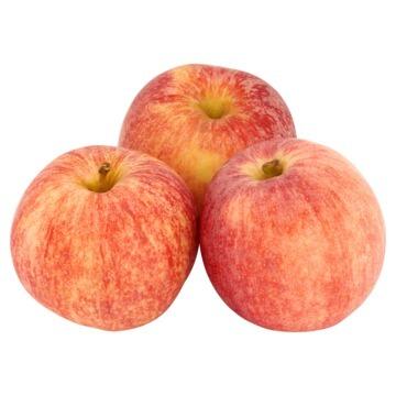 Appels Evelina