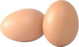 10 Eieren eko boerderij de eerste