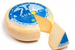 Kaas jong (mild) Aurora 550 gram