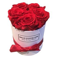 5 rode eternal rozen in een  witte flowerbox