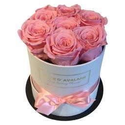 7 roze eternal rozen in een  witte flowerbox