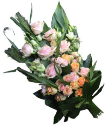 Legboeket zalm/ roze