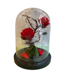 Rozen stolp met 2 longlasting roses