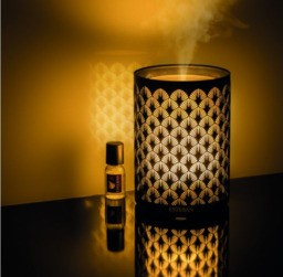 Esteban Mist Diffuser Black & Light Edition