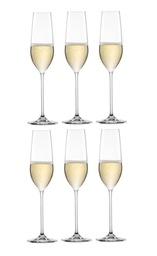 Fortissimo champagne glas nu 6 stuks voor € 34,95