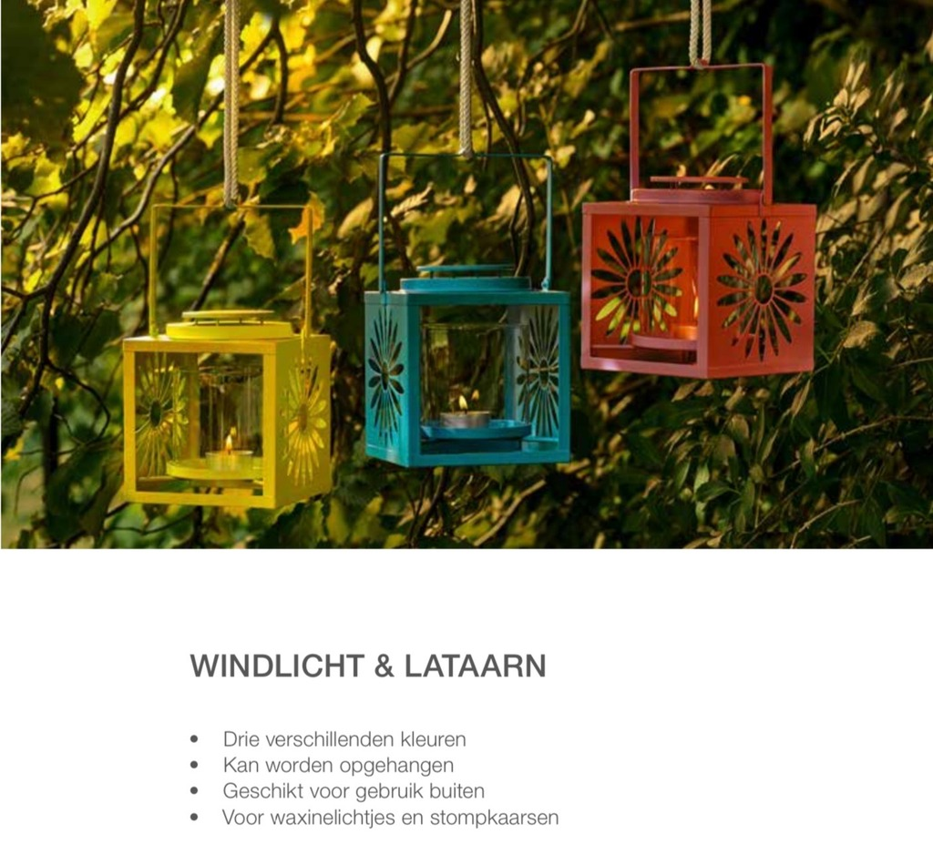 Windlicht & lantaarn Koraal