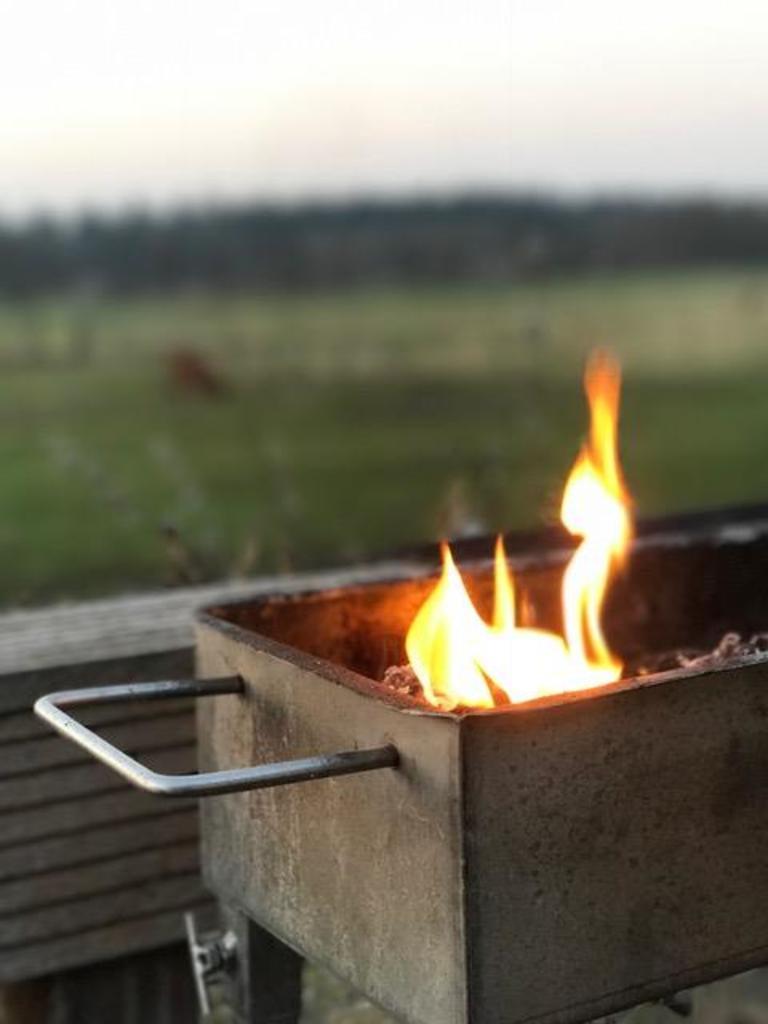Roest vrij stalen Barbecue