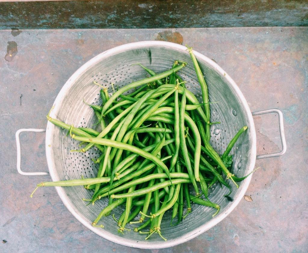Haricots Verts rolletjes met spek
