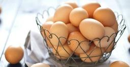 Biologische eieren