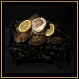 Platte oesters 4/0 dozijn
